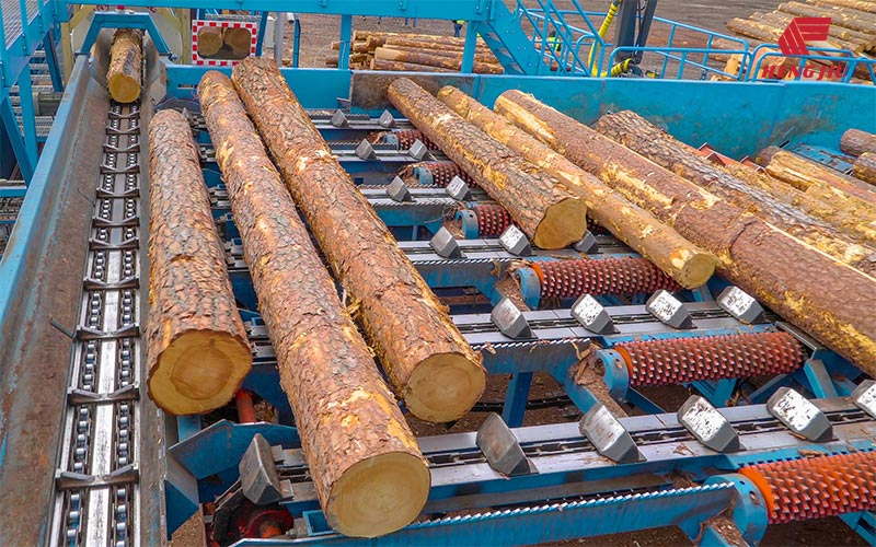 Timber Processing Industry